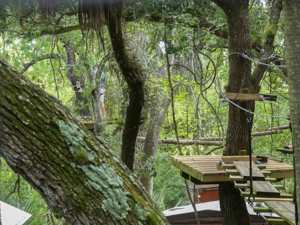 Tree trekking above zoo